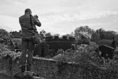 Man Shoot Hedges